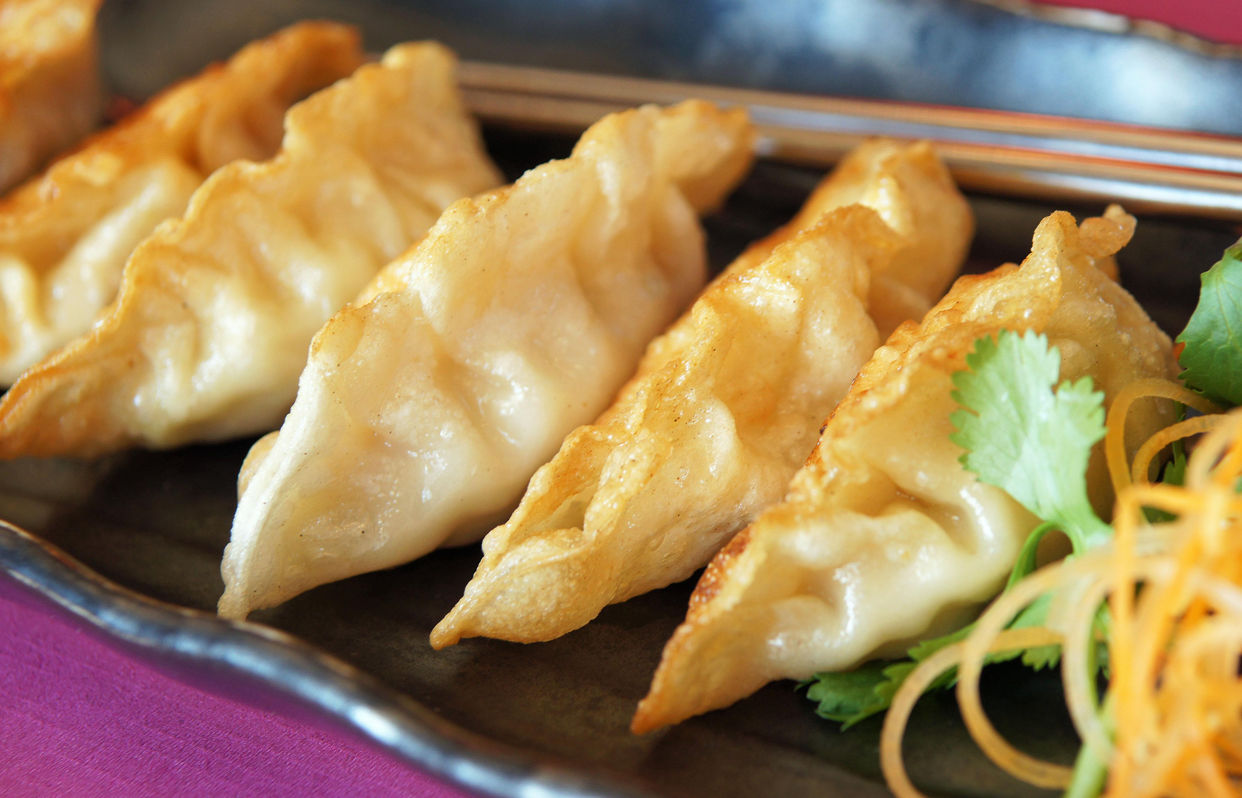 Gyoza - a Japanese appetizer made with chicken. at Cafe Opera