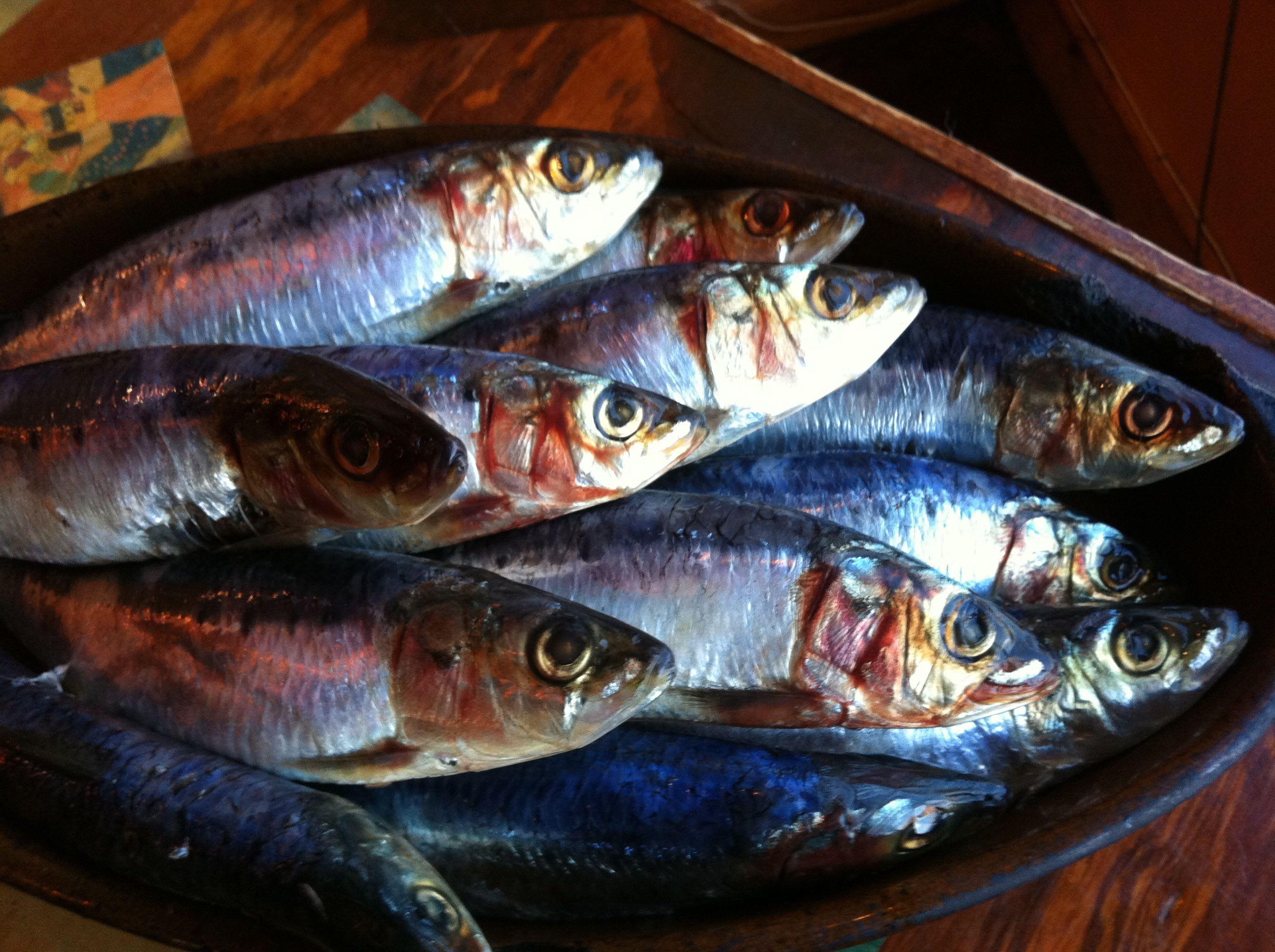 Sardines... at Taberna de Haro