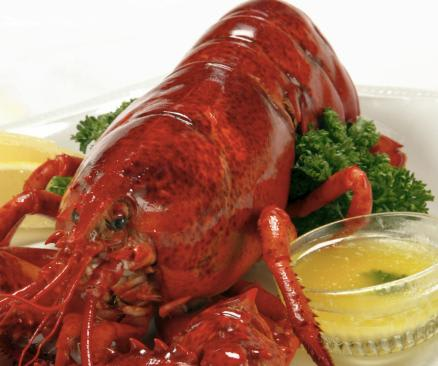 We work exclusively with a Maine Lobster Supplier, pulling Lobsters from specific areas by generations of Lobster harvesters. at CHEF TONY'S (Formerly Visions)