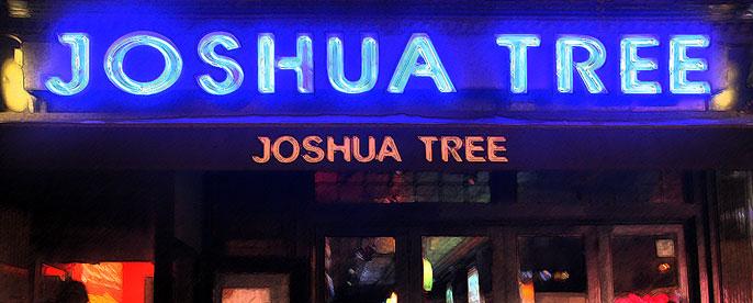 Photo at Joshua Tree