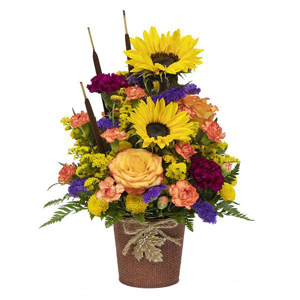 Harvest Greetings Bouquet - Large at ADDINGTONS FLORIST